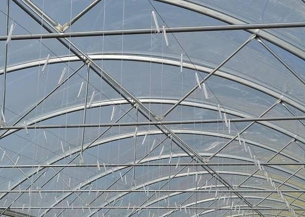 Structure des serres